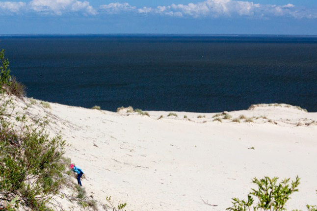White sand and blue sea on Lithuania's Curonian Spit. Photo credit: Kestutis Ambrozaitis