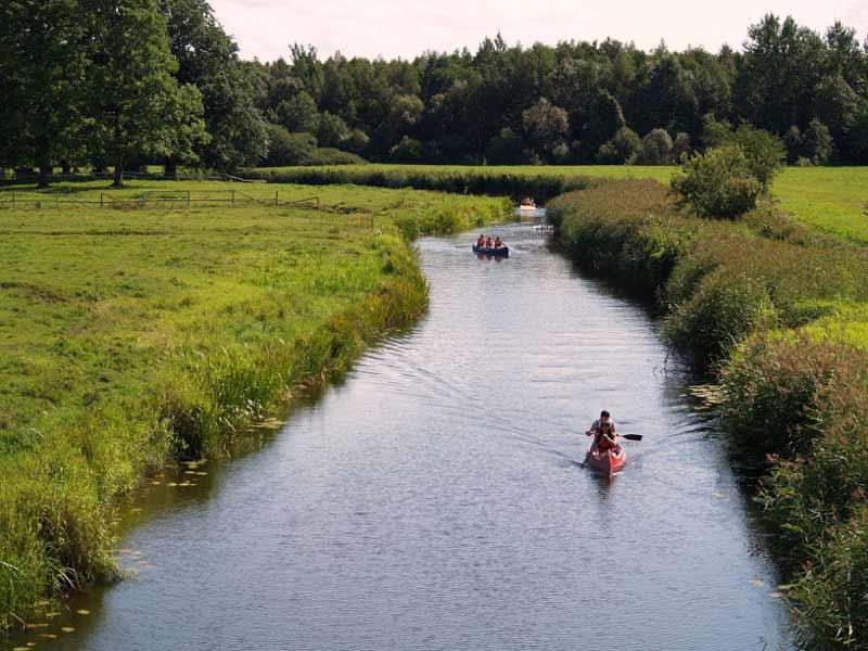Summer meadows in Soomaa, Estonia. Photo credit: Aivar Ruukel
