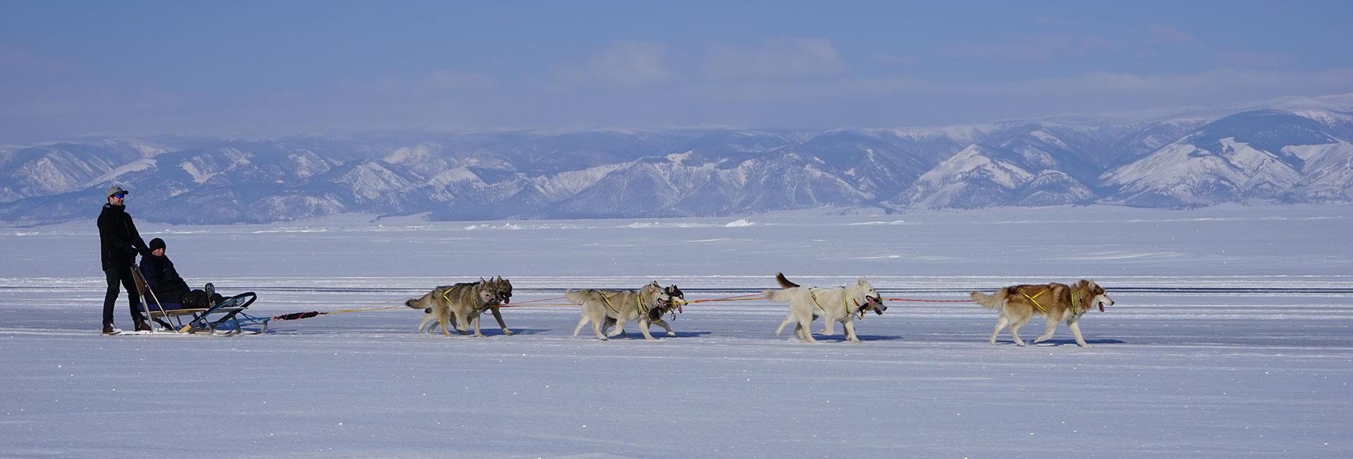 Traveling over Lake Baikal by dog sled. Photo credit: Vladimir Kvashnin