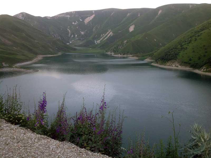 Wildflowers line the shore of Lake Kezenoy-am in Chechnya. Photo credit: Michel Behar