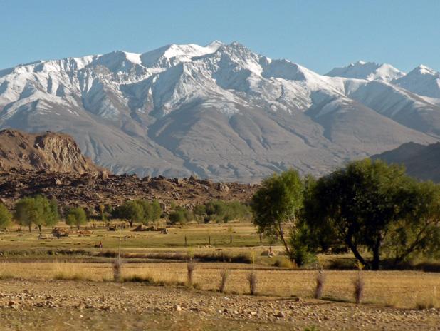 Mountain gorges give way to plains, poplars and grains here in Ishkashim, Tajikistan. Photo credit: Jake Smith