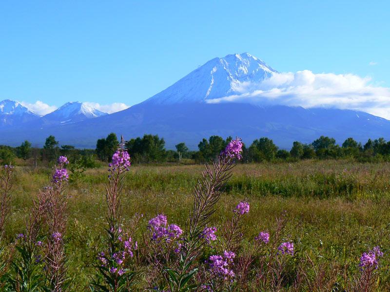 One of several soaring volcanoes on Siberia's remote Kamchatka Peninsula. Photo credit: Martin Klimenta