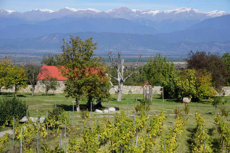Schuchmann Winery in Telavi, Georgia. Photo: Jake Smith