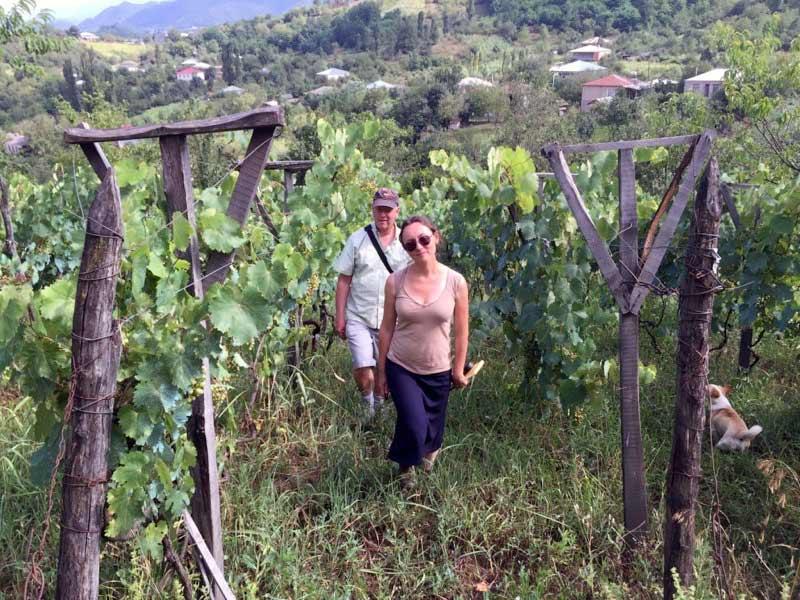Vineyards in Imereti, Georgia. Photo: John Wurdeman