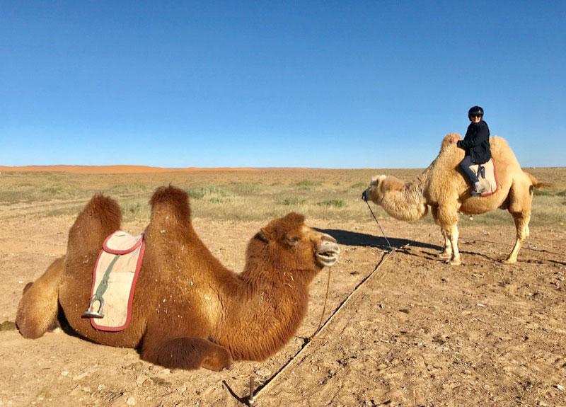 Before heading to Mongolia's Golden Eagle Festival, we stopped in the South Gobi Desert for a camel ride. Photo: Michel Behar