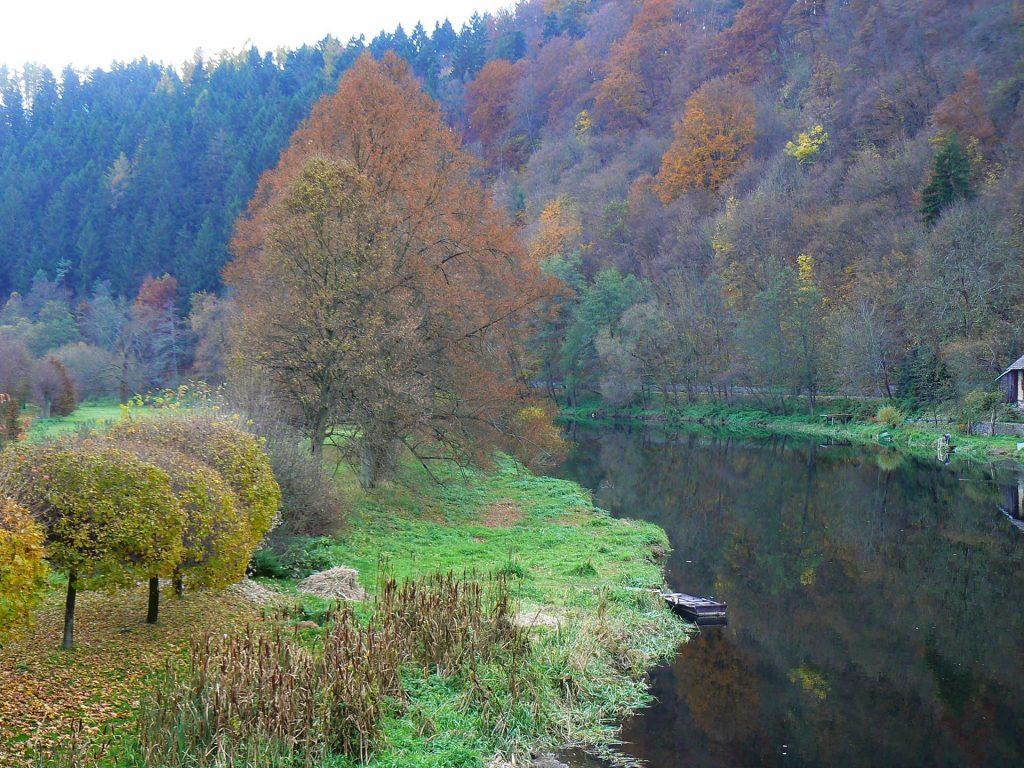 The Sazava River in the central Bohemia region of the Czech Republic. Photo credit: Martin Klimenta