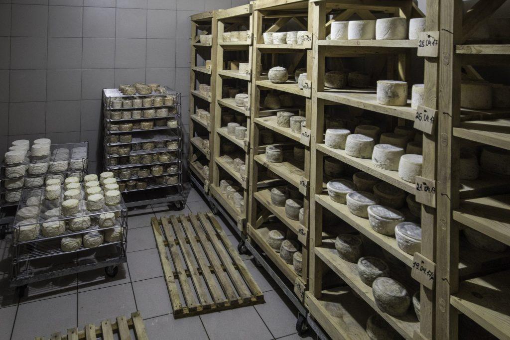 Goat cheese in Lviv, Ukraine. Photo credit: Gary Krosin