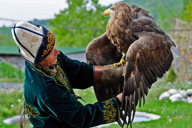 A Kazakh eagle handler offers an up-close look at his hunting companion. Photo credit: Christine Z. Anderson