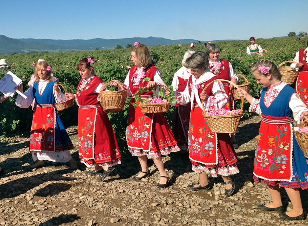 Break time: Rose pickers demonstrate a Bulgarian song and dance in this field of Kazanlashka roses. Photo credit: Michel Behar
